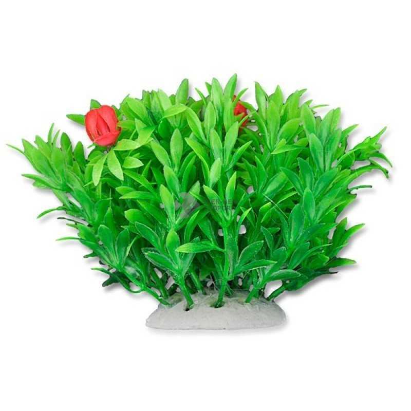 Happet műnövény 10cm - 1F02 (S)