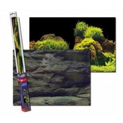 Poszter háttér Rock/Plants XL